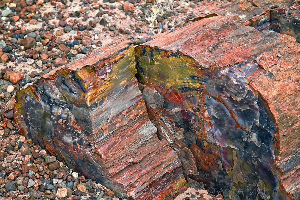 Энергия Камней №81 - Дендролит
