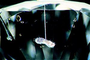 Пустая полость в алмазе после вытравки, удаления включений через канал, проделанный лазером