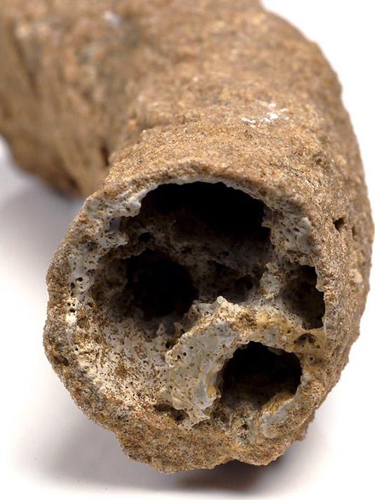 Фульгурит - фрагмент, срез, полость